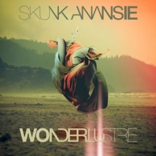 Over The Love - Skunk Anansie