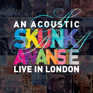 You Do Something To Me - Skunk Anansie