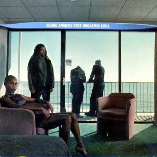 On My Hotel TV - Skunk Anansie