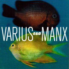 Orła Cień - Varius Manx